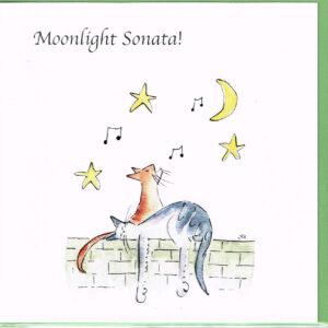 Musical Cat Cards